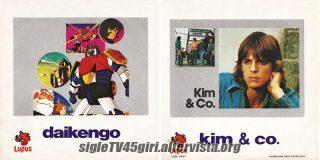 Daikengo disco vinile 45 giri